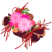 candyflower.png